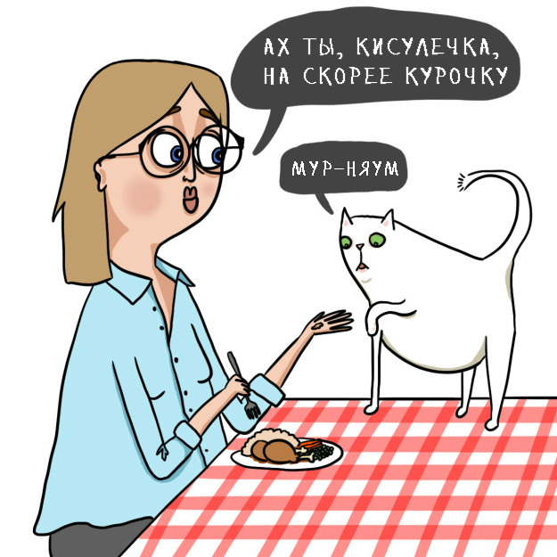 catsowner04