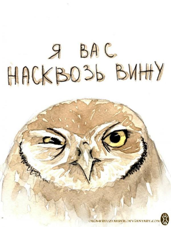 Подруге, картинки с надписями про сову