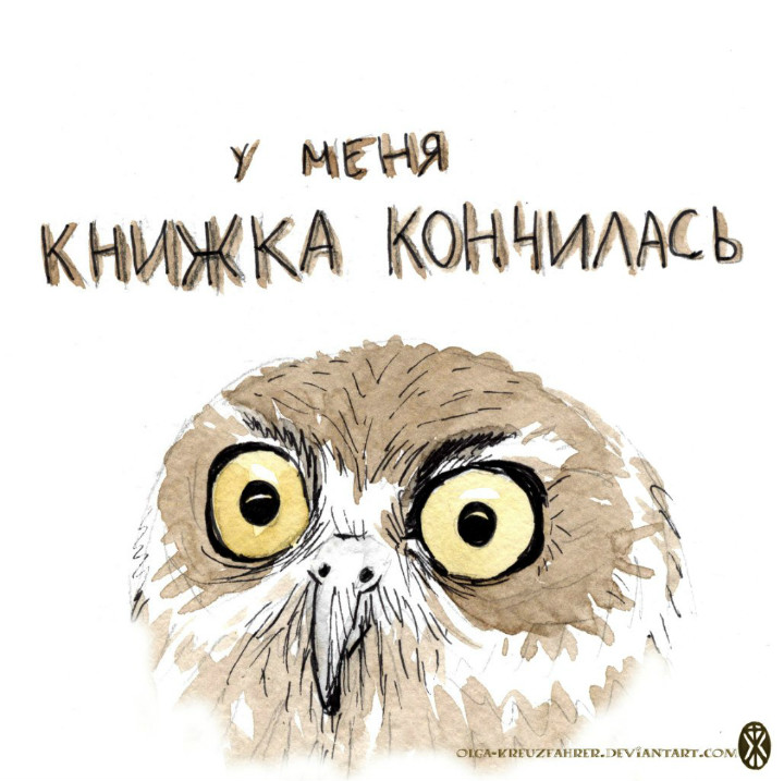 owl09