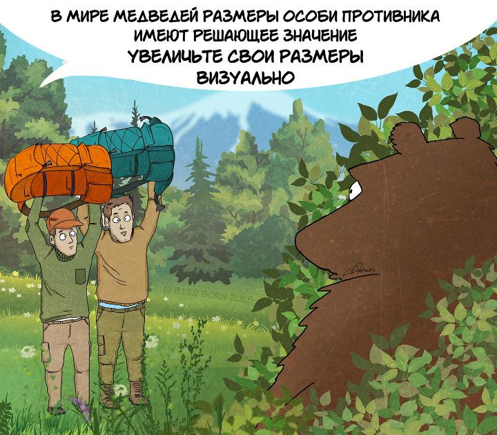 bear03