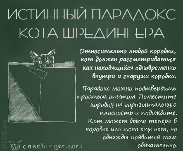 cat4b