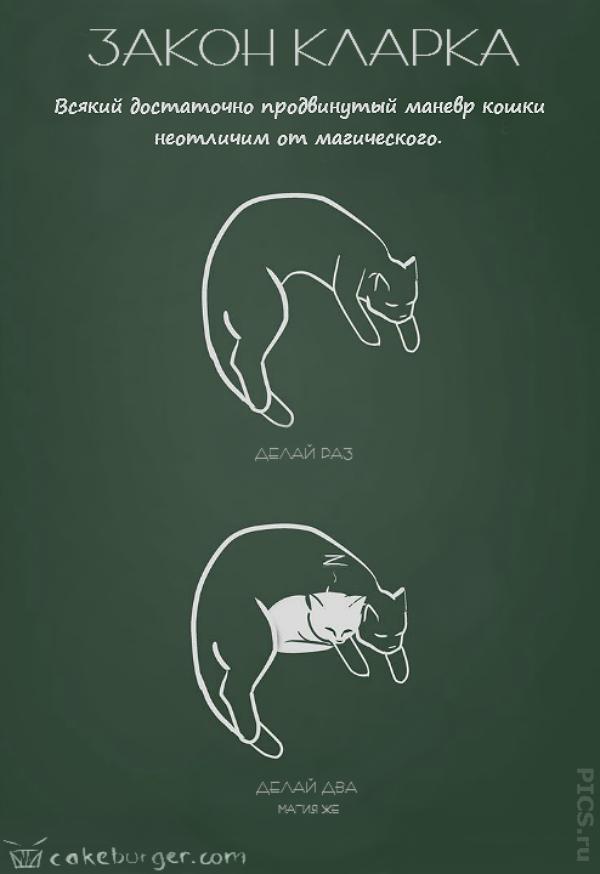cat5b