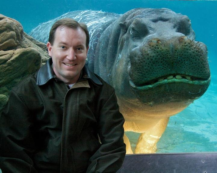 animal-photobomb-smiling-hippo