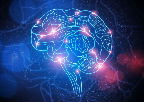 Тест: определи фактический возраст своего мозга