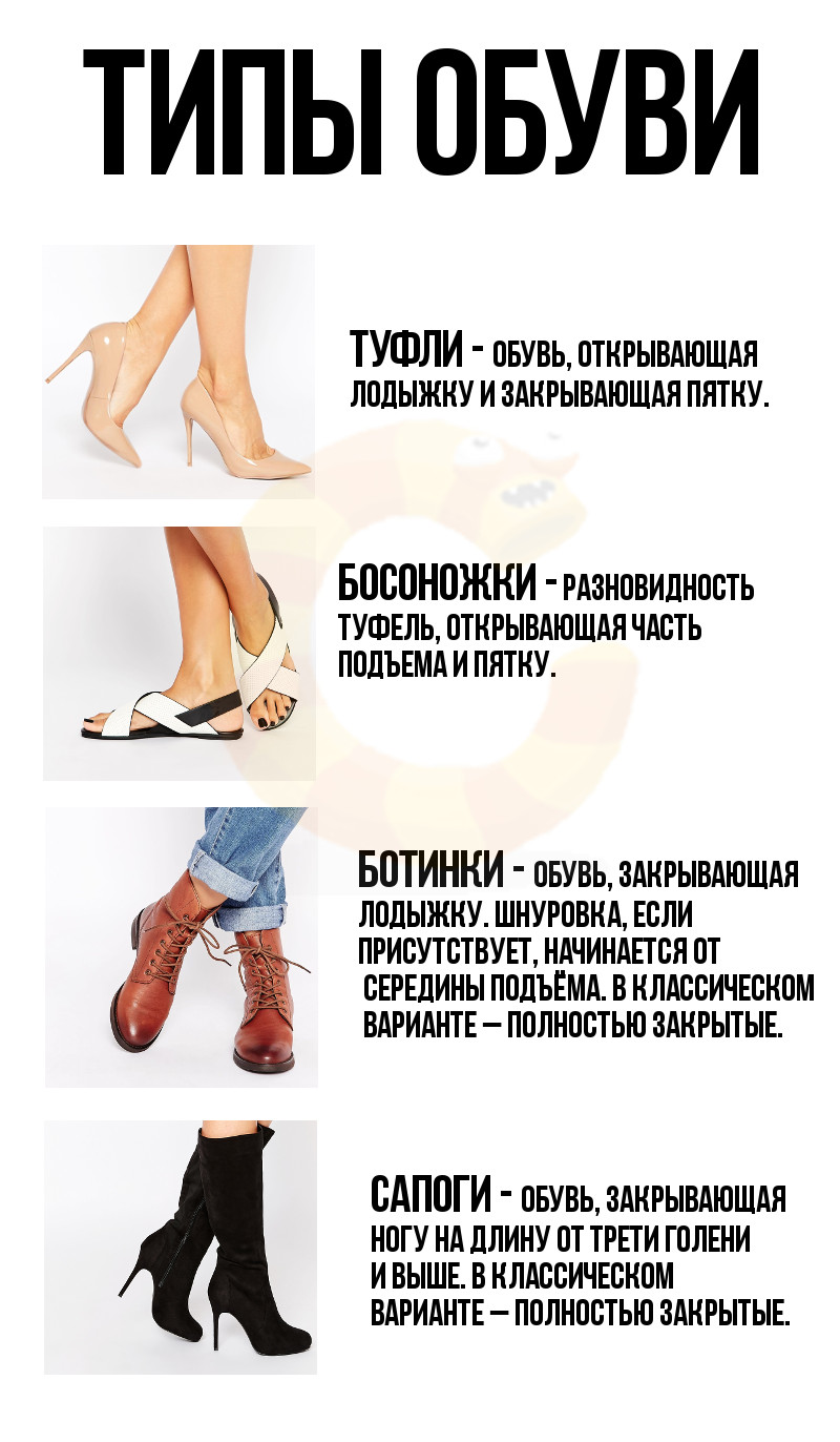 Путеводитель по женской обуви – в картинках