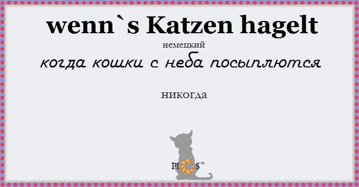 catidiom10