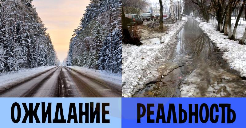 zim10