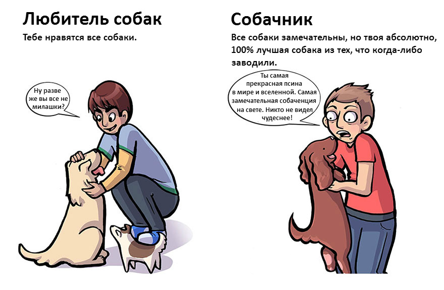 doglovers02