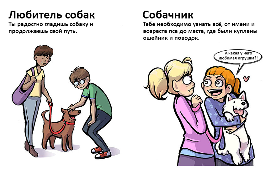 doglovers07