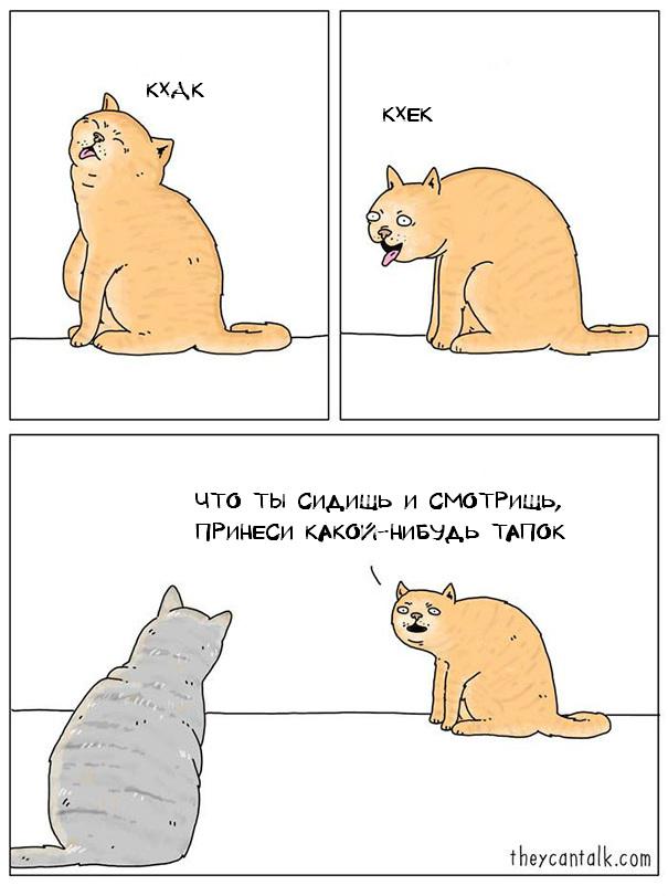 funny-animal-comics-they-can-talk-jimmy-craig-19-57469f9468ebe__605