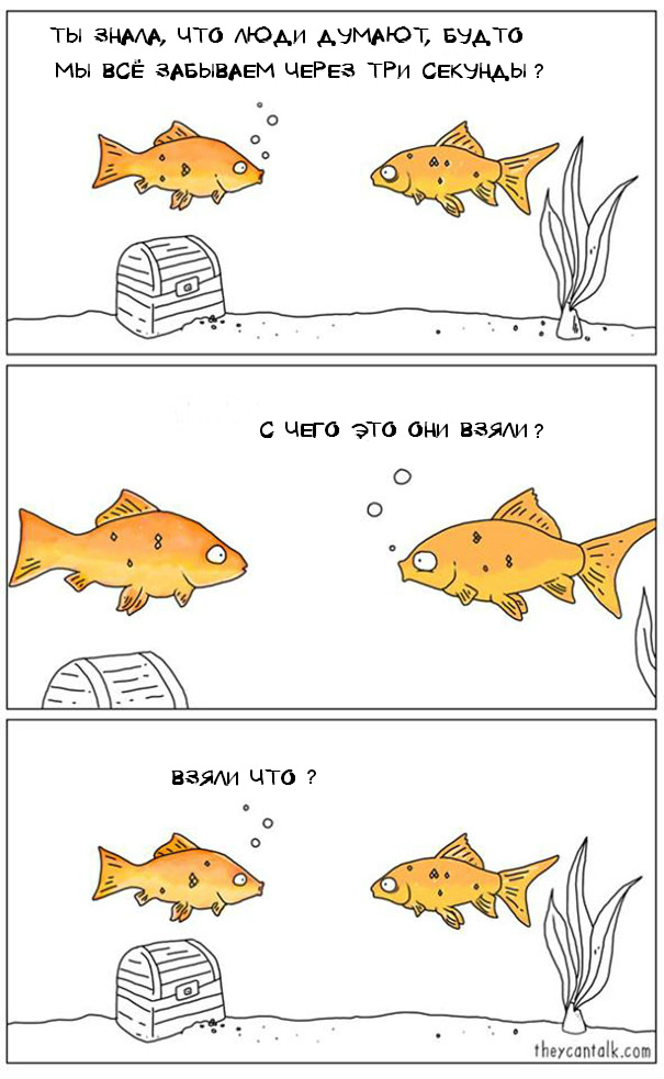 funny-animal-comics-they-can-talk-jimmy-craig-29-57469fb09e2af__605