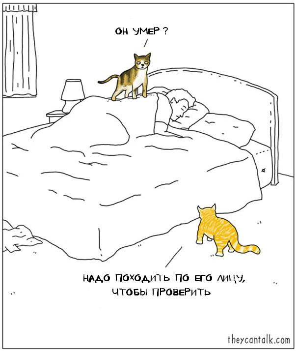 funny-animal-comics-they-can-talk-jimmy-craig-4-57469f7456097__605