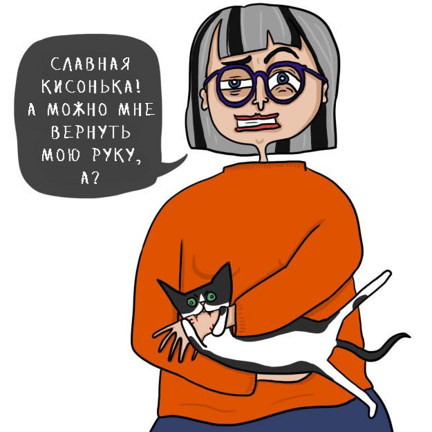 catsowner08