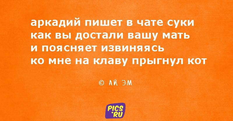 pir11