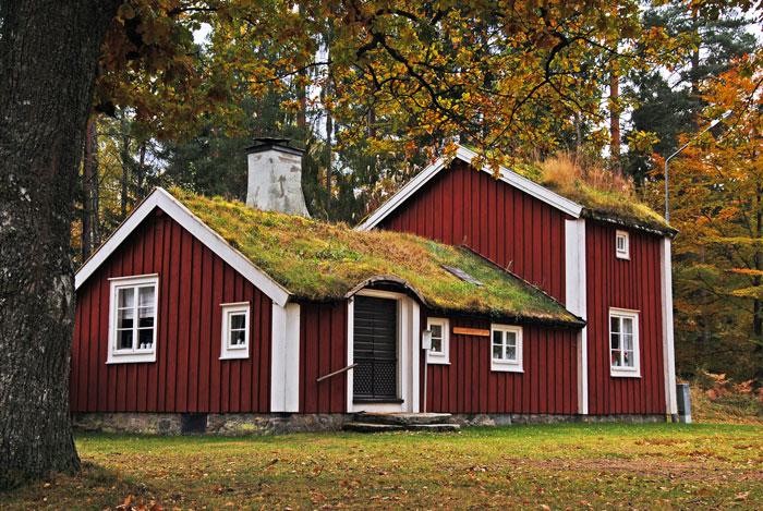 Стоковые фотографии природы Швеции