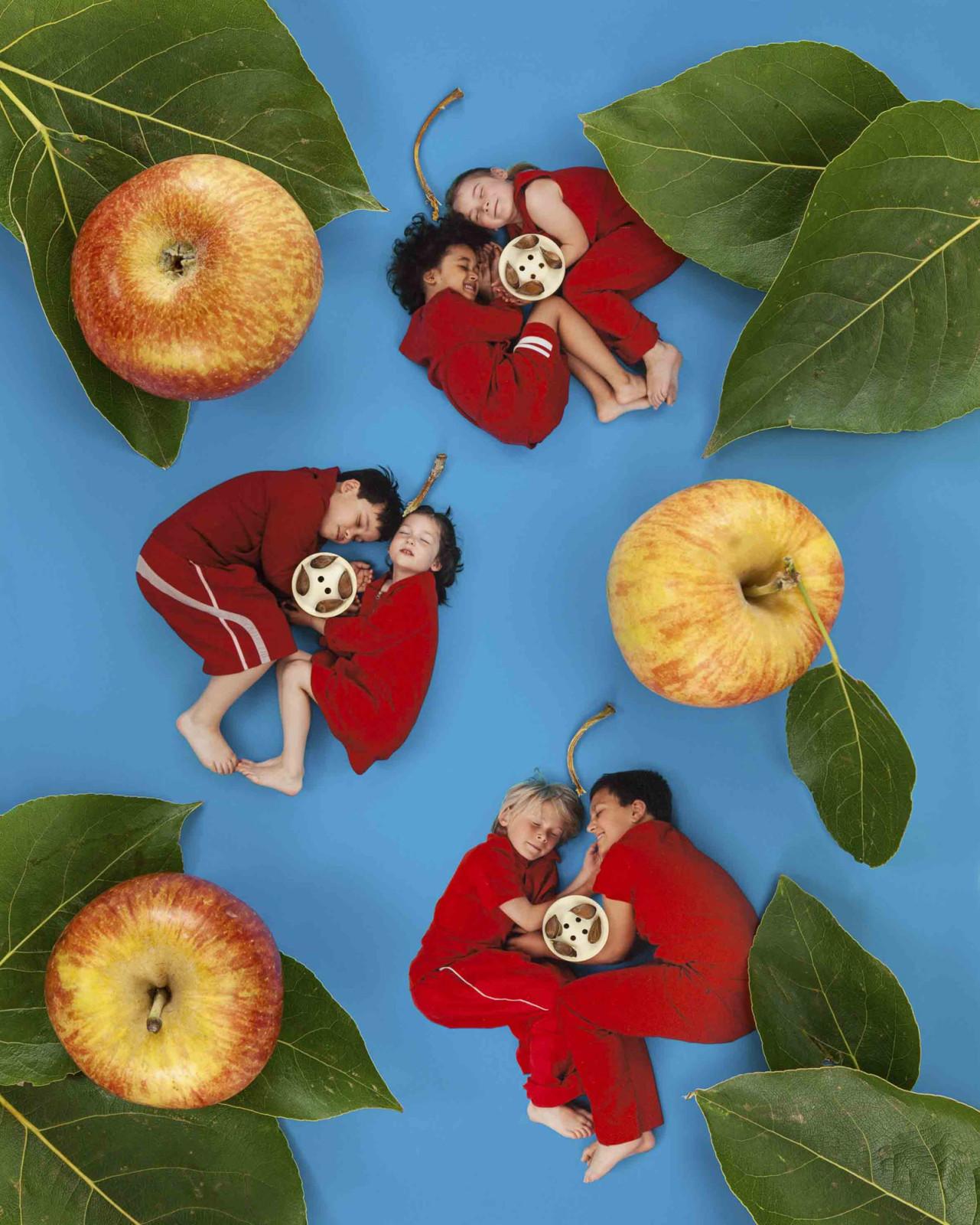 In-meinem-kleinen-Apfel-1281x1600